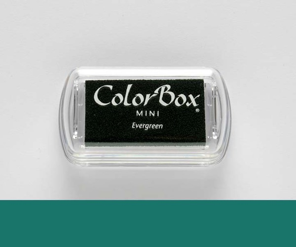 Mini ColorBox · Evergreen - Dunkelgrün